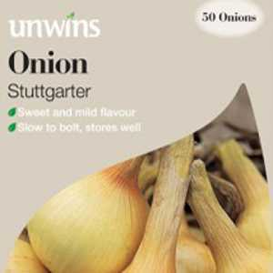 Onions Stuttgarter Sets/Bulbs 50 Per Pack