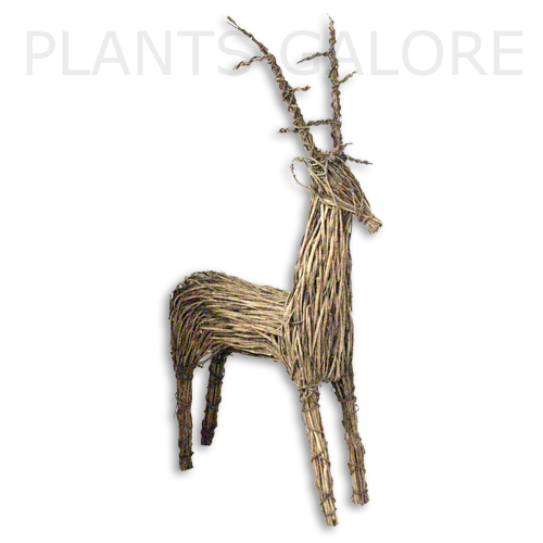 Buy Wicker Reindeers Online Order The