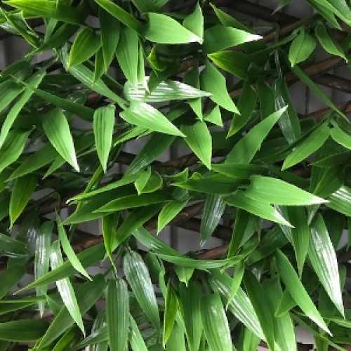 Bamboo Artificial Trellis