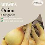 Onions Stuttgarter Sets/Bulbs 50 Per Pack