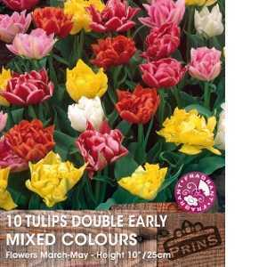Tulip Bulbs Double Early Mixed Colours 10 Per Pack