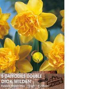 Daffodil Bulbs Double Dick Wilden 5 Per Pack