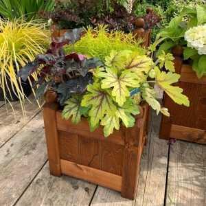 AFK Garden - Classic Planter Beech 15 inch