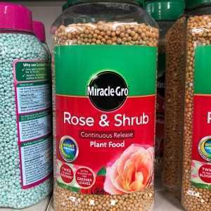 Miracle-Gro Continuous Release Rose & Shrub Food