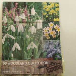 Woodland Collection x 50