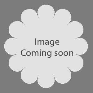 Rose Loveknot 10ltr 1.2M Trellis
