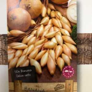 Banana Onion Sets 50 Per Pack
