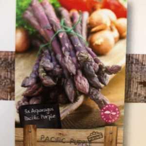 Asparagus Pacific Purple 3 Per Pack