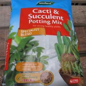 Cacti and Succulent Potting Mix by Westland 4kg