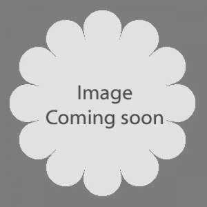Rubus Phoenicolasius (Japanese Wineberry)